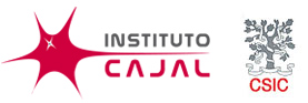 logo-cajal-con-csic